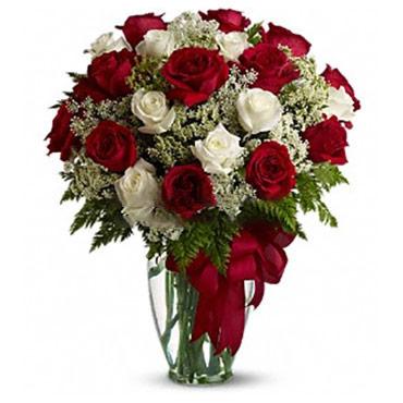 Rosas Infinitas + <br><b>6 GRATIS!</b>
